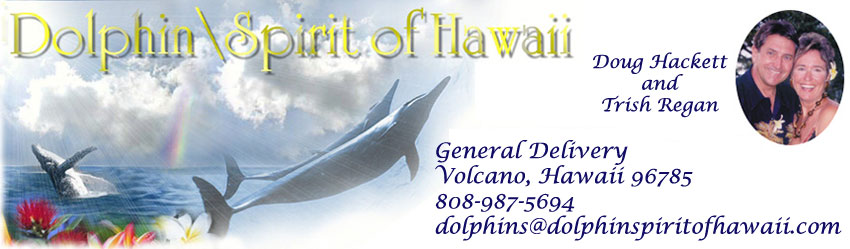 Dolphin Spirit of Hawaii